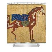 A Piebald Stallion Shower Curtain