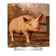 A Pig In Autumn Shower Curtain