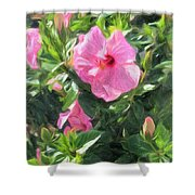 A Pink Hibiscus Shower Curtain