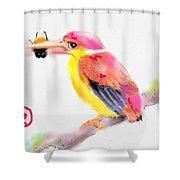 A Pink Rainbow Shower Curtain
