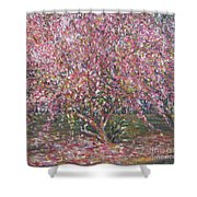 A Pink Tree Shower Curtain