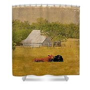 A Place For Togetherness Shower Curtain by Jan Amiss Photography
