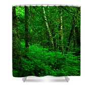 A Place In The Forest Shower Curtain