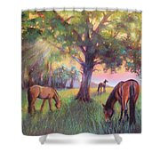 A Place Of Healing Shower Curtain