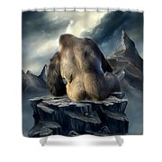 A Place To Be Shower Curtain