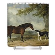 A Pony With A Dog Shower Curtain