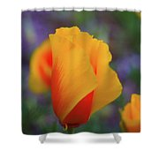 A Poppy Furled  Shower Curtain