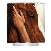 A Quiet Moment Shower Curtain by Pat Erickson