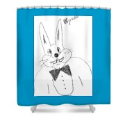 A Rabbit. Shower Curtain