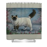 A Himalayan Cat Shower Curtain