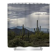 A Rainy Desert Afternoon  Shower Curtain