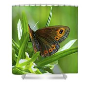 A Red Butterfly Perching  Shower Curtain