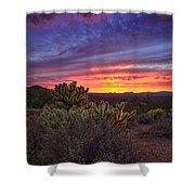 A Red Hot Desert Sunset Shower Curtain