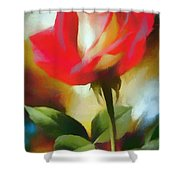 A Red Rose For Amelia Shower Curtain