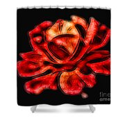 A Red Rose For You 2 Shower Curtain