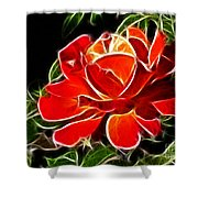 A Red Rose For You Shower Curtain