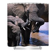 A Refreshing Moment Shower Curtain