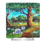A Remembrance Shower Curtain