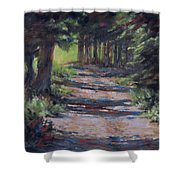 A Road Less Travelled Shower Curtain