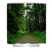 A Road Through The Forest Shower Curtain