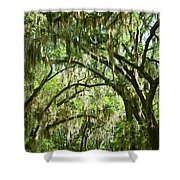 A Road To The Inside Just Outside Of Savannah Shower Curtain