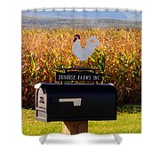 A Rooster Above A Mailbox 1 Shower Curtain