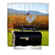 A Rooster Above A Mailbox 2 Shower Curtain