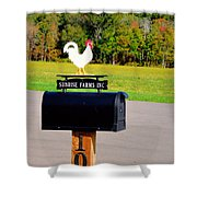 A Rooster Above A Mailbox 3 Shower Curtain