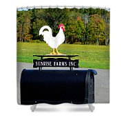 A Rooster Above A Mailbox 4 Shower Curtain