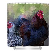 A Rooster And A Hen Shower Curtain