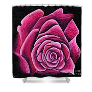 A Rose In Time Shower Curtain