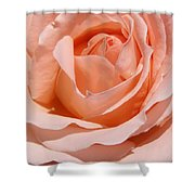 A Rose Is A Rose By Any  Name .... Shower Curtain