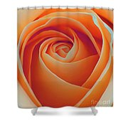 A Rose Like None Other Shower Curtain