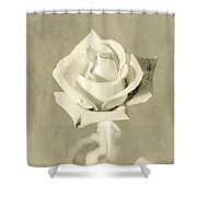 A Rose Of Alternate Processed Shower Curtain