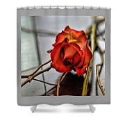 A Rose On Bamboo Shower Curtain