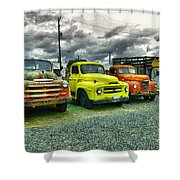 A Row Of Beauties Shower Curtain