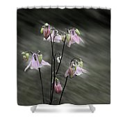 A Rush Of Columbine Shower Curtain