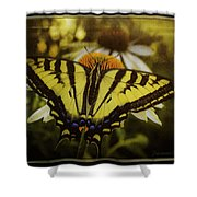 A Safe Place To Land Shower Curtain
