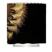 A Saguaro Section Shower Curtain