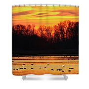 A Scene At Bombay Hook National Shower Curtain