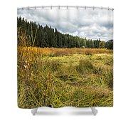 A Seasonal View Shower Curtain