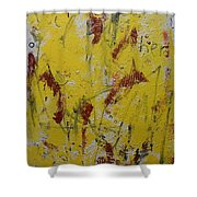 A Second Look Shower Curtain
