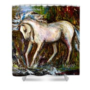 A Secret Place White Hores Painting Shower Curtain
