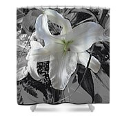 A Sense Of Purity Shower Curtain