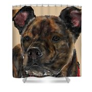 A Serious Pooch Shower Curtain