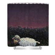 A Sheep In The Dark Shower Curtain by James W Johnson