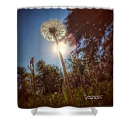 A Shiny Flower Day Shower Curtain