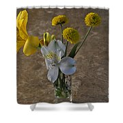 A Shot Of Colors Shower Curtain