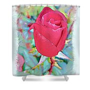 A Single Rose In October Shower Curtain