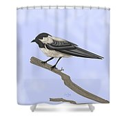 A Small Guest Shower Curtain
